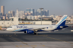 xingyeさんが、ドバイ国際空港で撮影したインディゴ A320-232の航空フォト(写真)