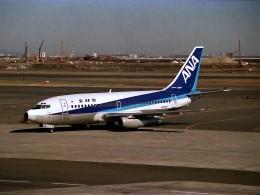 エルさんが、羽田空港で撮影した全日空 737-281/Advの航空フォト(飛行機 写真・画像)