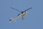 やーまんさんが、東京ヘリポートで撮影したエクセル航空 AS355N Ecureuil 2の航空フォト(写真)