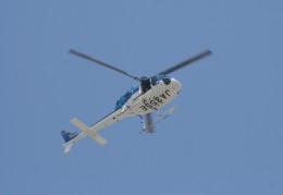 やーまんさんが、東京ヘリポートで撮影したエクセル航空 AS355N Ecureuil 2の航空フォト(飛行機 写真・画像)