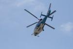 やーまんさんが、東京ヘリポートで撮影した川崎市消防航空隊 AS365N3 Dauphin 2の航空フォト(飛行機 写真・画像)