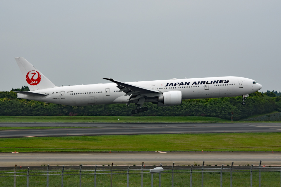 tsubasa0624さんの日本航空 Boeing 777-300 (JA736J) 航空フォト