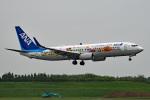 tsubasa0624さんが、成田国際空港で撮影した全日空 737-881の航空フォト(飛行機 写真・画像)