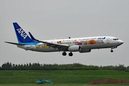 tsubasa0624さんが、成田国際空港で撮影した全日空 737-881の航空フォト(写真)