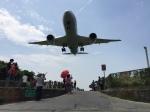 denden13さんが、台北松山空港で撮影した全日空 787-8 Dreamlinerの航空フォト(飛行機 写真・画像)