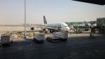 Koenig117さんが、北京首都国際空港で撮影したシンガポール航空 A380-841の航空フォト(写真)