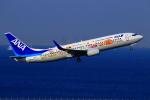 Eckkyさんが、羽田空港で撮影した全日空 737-881の航空フォト(写真)