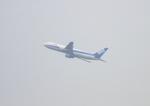 ふじいあきらさんが、羽田空港で撮影した全日空 767-381の航空フォト(飛行機 写真・画像)