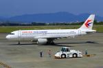 Eckkyさんが、静岡空港で撮影した中国東方航空 A320-214の航空フォト(写真)