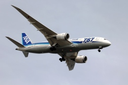 空の旅人さんが、羽田空港で撮影した全日空 787-8 Dreamlinerの航空フォト(飛行機 写真・画像)