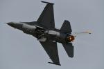 パラノイアさんが、岩国空港で撮影したアメリカ空軍 F-16CM-50-CF Fighting Falconの航空フォト(写真)
