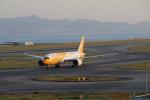 GRX135さんが、関西国際空港で撮影したスクート 787-8 Dreamlinerの航空フォト(写真)