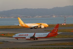 GRX135さんが、関西国際空港で撮影したチェジュ航空 737-8HXの航空フォト(写真)