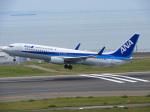 おっつんさんが、中部国際空港で撮影した全日空 737-881の航空フォト(写真)