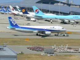 うすさんが、関西国際空港で撮影した全日空 A320-214の航空フォト(飛行機 写真・画像)