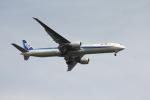 空の旅人さんが、羽田空港で撮影した全日空 777-381/ERの航空フォト(写真)