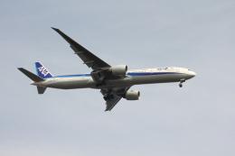 空の旅人さんが、羽田空港で撮影した全日空 777-381/ERの航空フォト(飛行機 写真・画像)