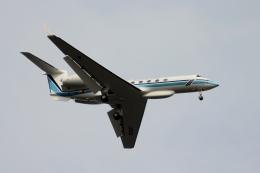 空の旅人さんが、羽田空港で撮影した海上保安庁 G-V Gulfstream Vの航空フォト(飛行機 写真・画像)