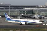 ATOMさんが、羽田空港で撮影した全日空 787-9の航空フォト(写真)