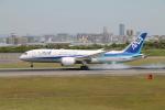 RAOUさんが、伊丹空港で撮影した全日空 787-8 Dreamlinerの航空フォト(写真)