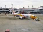 RUNWAY24さんが、ドンムアン空港で撮影したノックエア 737-88Lの航空フォト(飛行機 写真・画像)