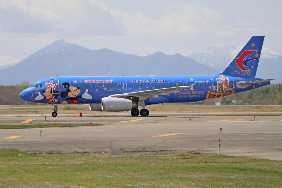 北の熊さんの中国東方航空 Airbus A320 (B-6635) 航空フォト