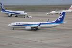 meijeanさんが、中部国際空港で撮影した全日空 737-881の航空フォト(写真)