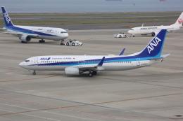 meijeanさんが、中部国際空港で撮影した全日空 737-881の航空フォト(飛行機 写真・画像)