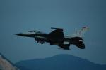 FRTさんが、岩国空港で撮影したアメリカ空軍 F-16CM-50-CF Fighting Falconの航空フォト(飛行機 写真・画像)