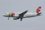 resocha747さんが、ロンドン・ヒースロー空港で撮影したTAPポルトガル航空 A319-111の航空フォト(写真)