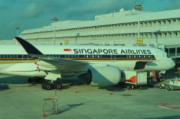 シフォンさんが、シンガポール・チャンギ国際空港で撮影したシンガポール航空 A350-941XWBの航空フォト(写真)