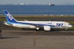たみぃさんが、羽田空港で撮影した全日空 787-8 Dreamlinerの航空フォト(写真)