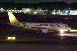 神宮寺ももさんが、成田国際空港で撮影したセブパシフィック航空 A320-214の航空フォト(飛行機 写真・画像)