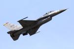 take_2014さんが、岩国空港で撮影したアメリカ空軍 F-16CM-50-CF Fighting Falconの航空フォト(飛行機 写真・画像)