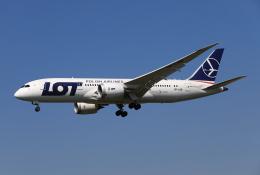 MOHICANさんが、成田国際空港で撮影したLOTポーランド航空 787-8 Dreamlinerの航空フォト(写真)