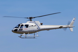 yabyanさんが、名古屋飛行場で撮影した本田航空 AS350B Ecureuilの航空フォト(飛行機 写真・画像)