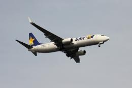 空の旅人さんが、羽田空港で撮影したスカイマーク 737-86Nの航空フォト(飛行機 写真・画像)