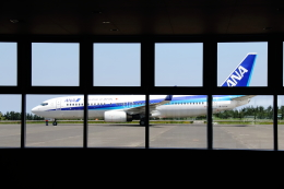 Naoxさんが、鳥取空港で撮影した全日空 737-881の航空フォト(飛行機 写真・画像)