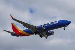 LAX Spotterさんが、ロサンゼルス国際空港で撮影したサウスウェスト航空 737-8-MAXの航空フォト(写真)