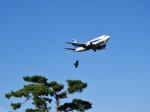 おっつんさんが、小松空港で撮影したANAウイングス 737-5L9の航空フォト(飛行機 写真・画像)