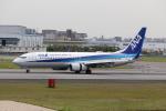 SUIKENさんが、伊丹空港で撮影した全日空 737-881の航空フォト(写真)