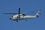 Joshuaさんが、名古屋飛行場で撮影した海上自衛隊 SH-60Kの航空フォト(写真)