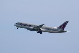 reonさんが、プーケット国際空港で撮影したカタール航空 787-8 Dreamlinerの航空フォト(飛行機 写真・画像)