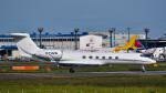 パンダさんが、成田国際空港で撮影した1010 AVIATION LLC G-Vの航空フォト(写真)