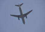 だだちゃ豆さんが、庄内空港で撮影した全日空 A320-211の航空フォト(写真)