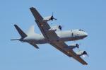 ちゃぽんさんが、アバロン空港で撮影したオーストラリア空軍 P-3C Orionの航空フォト(写真)