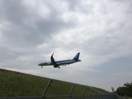 大富豪守護神さんが、高松空港で撮影した全日空 A321-131の航空フォト(飛行機 写真・画像)