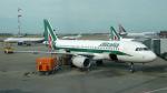 ちゃぽんさんが、シェレメーチエヴォ国際空港で撮影したアリタリア航空 A320-216の航空フォト(写真)
