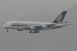 トオルさんが、香港国際空港で撮影したシンガポール航空 A380-841の航空フォト(写真)