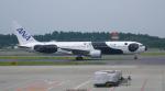ちゃぽんさんが、成田国際空港で撮影した全日空 767-381/ERの航空フォト(写真)